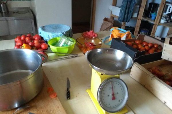Atelier « Cuisiner des plats délicieux en valorisant des restes »